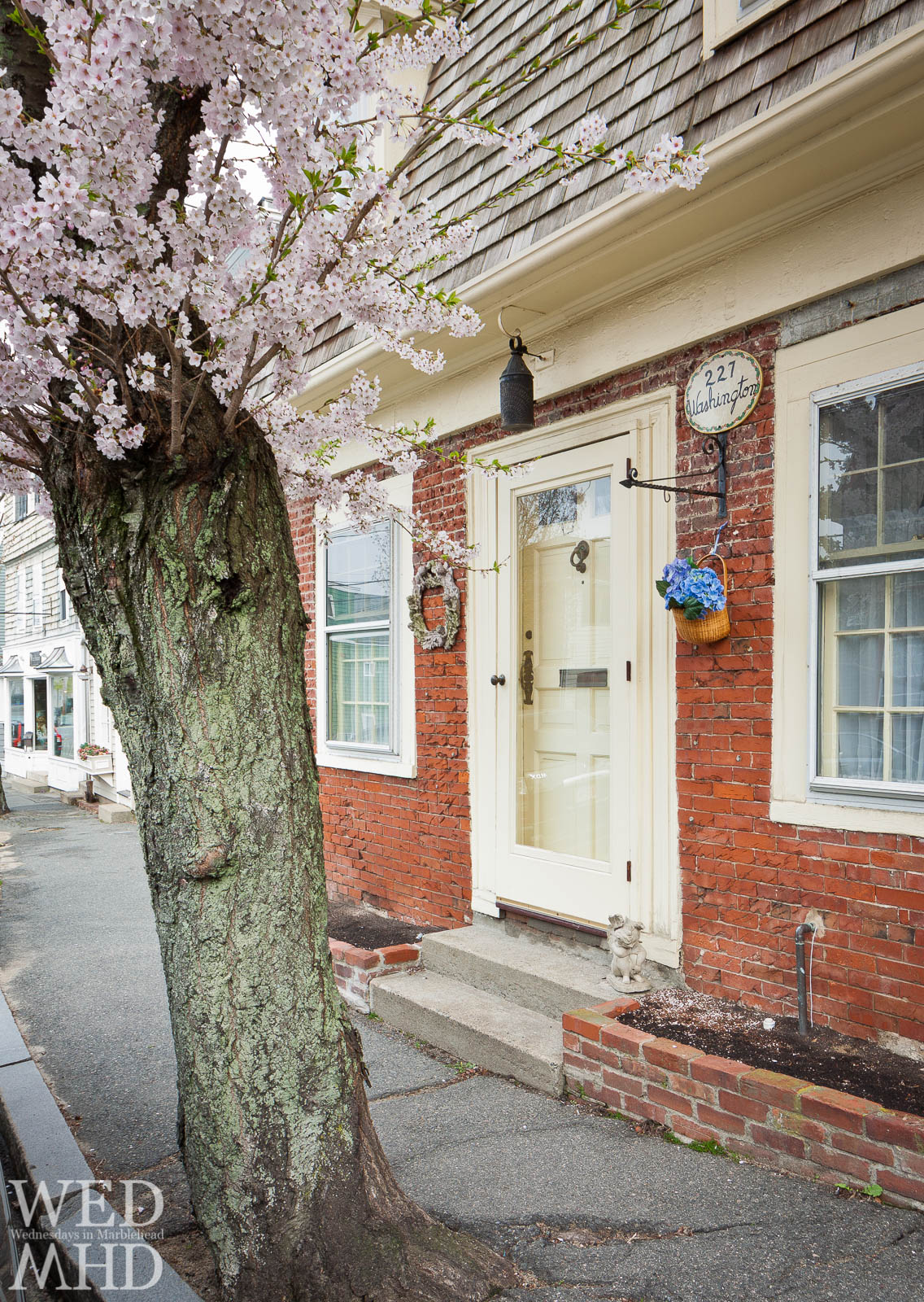 Spring Comes to Marblehead