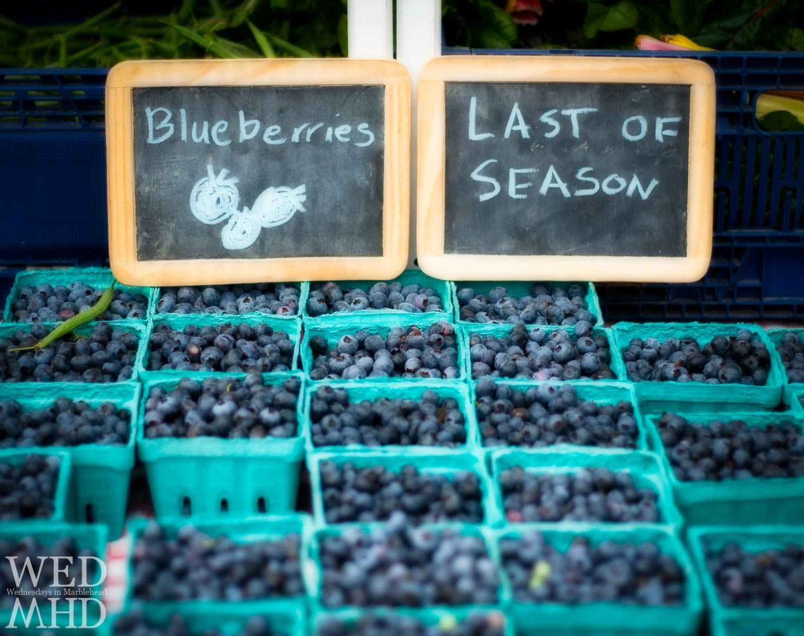 Last Blueberries of the Season at the Farmers Market