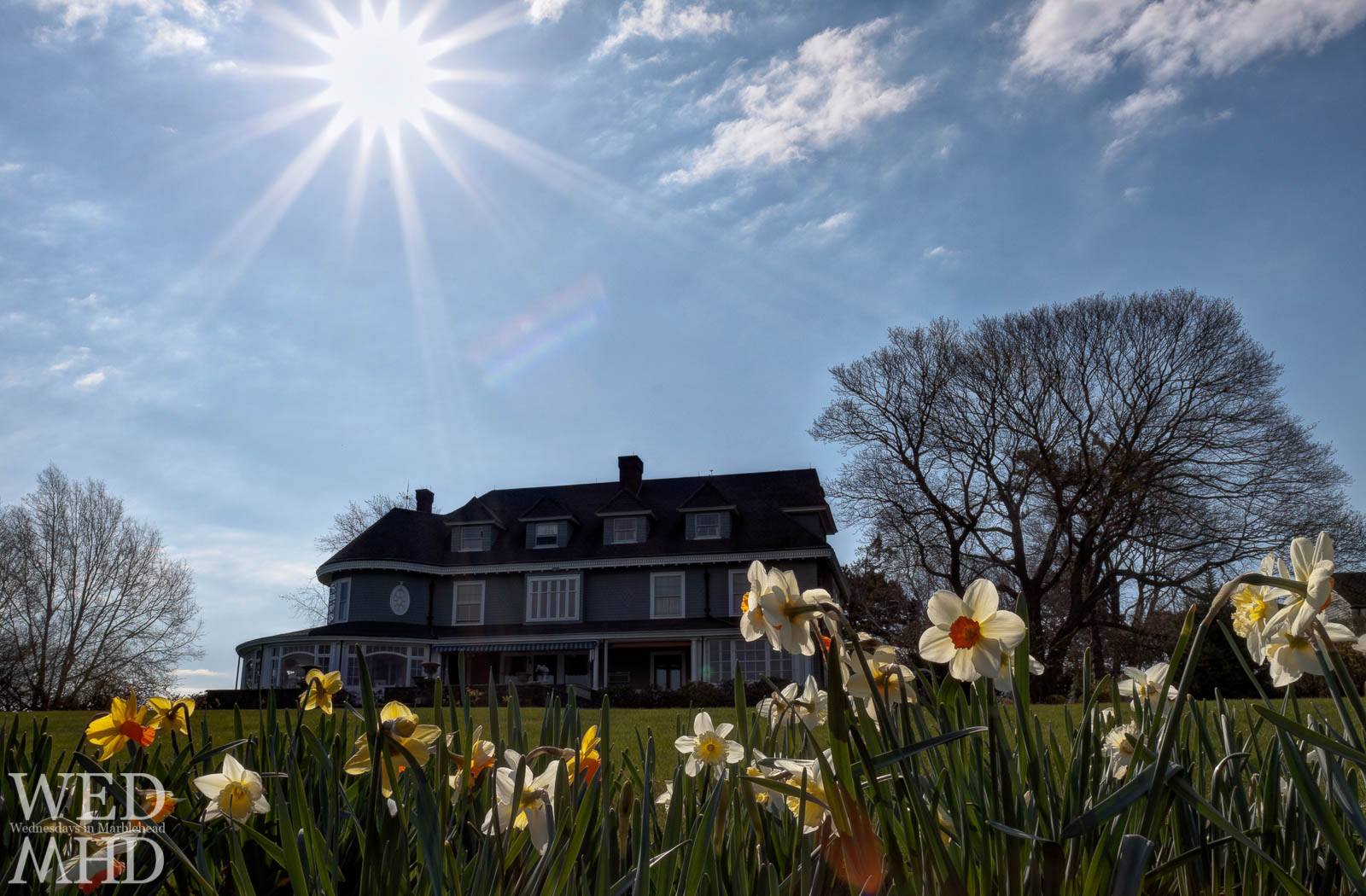 Marblehead neck house with flowers in sun