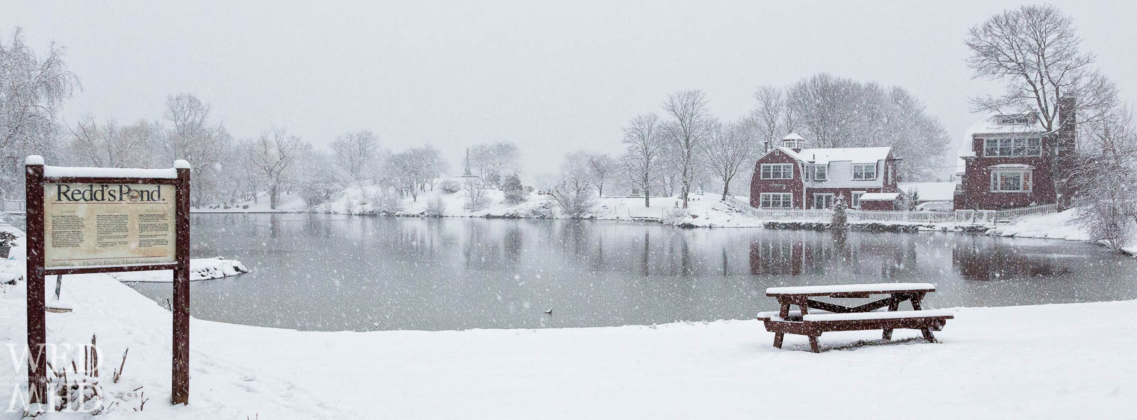 snow falling on pond