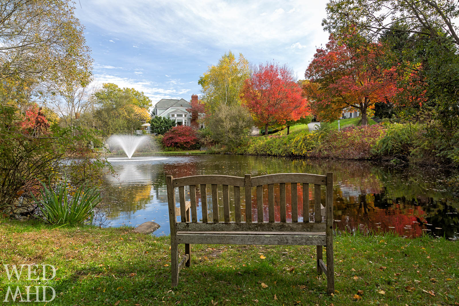 pond at peak foliage