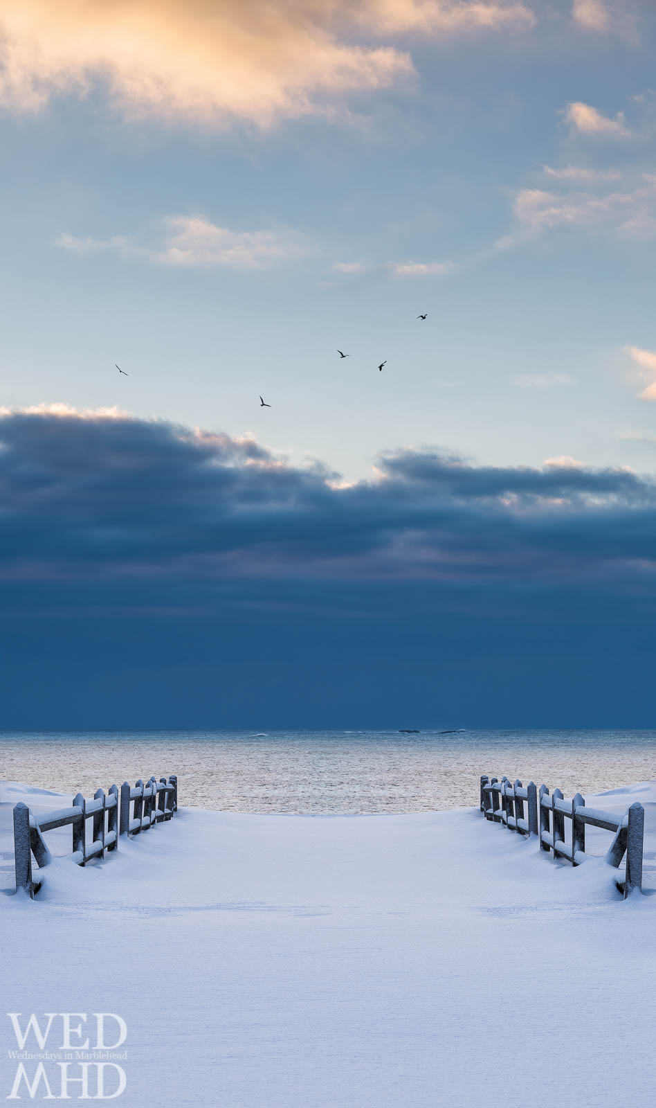 Fences in the Snow and the Ocean Beyond