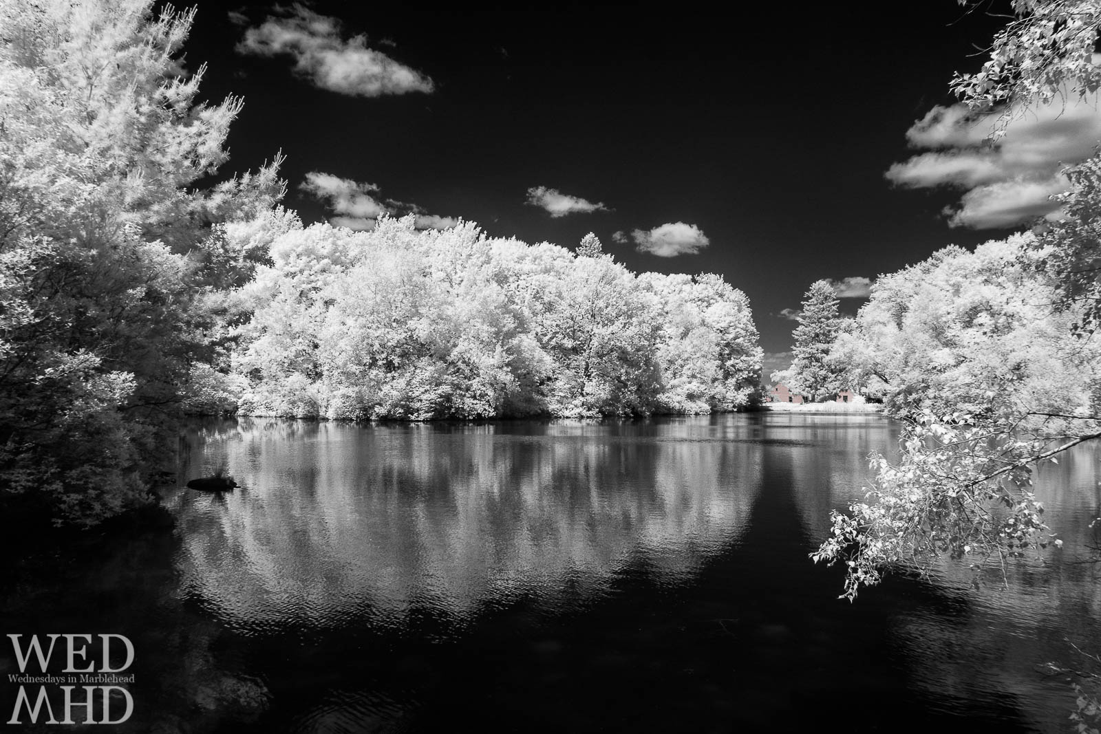 Black Joe's Pond in Infrared