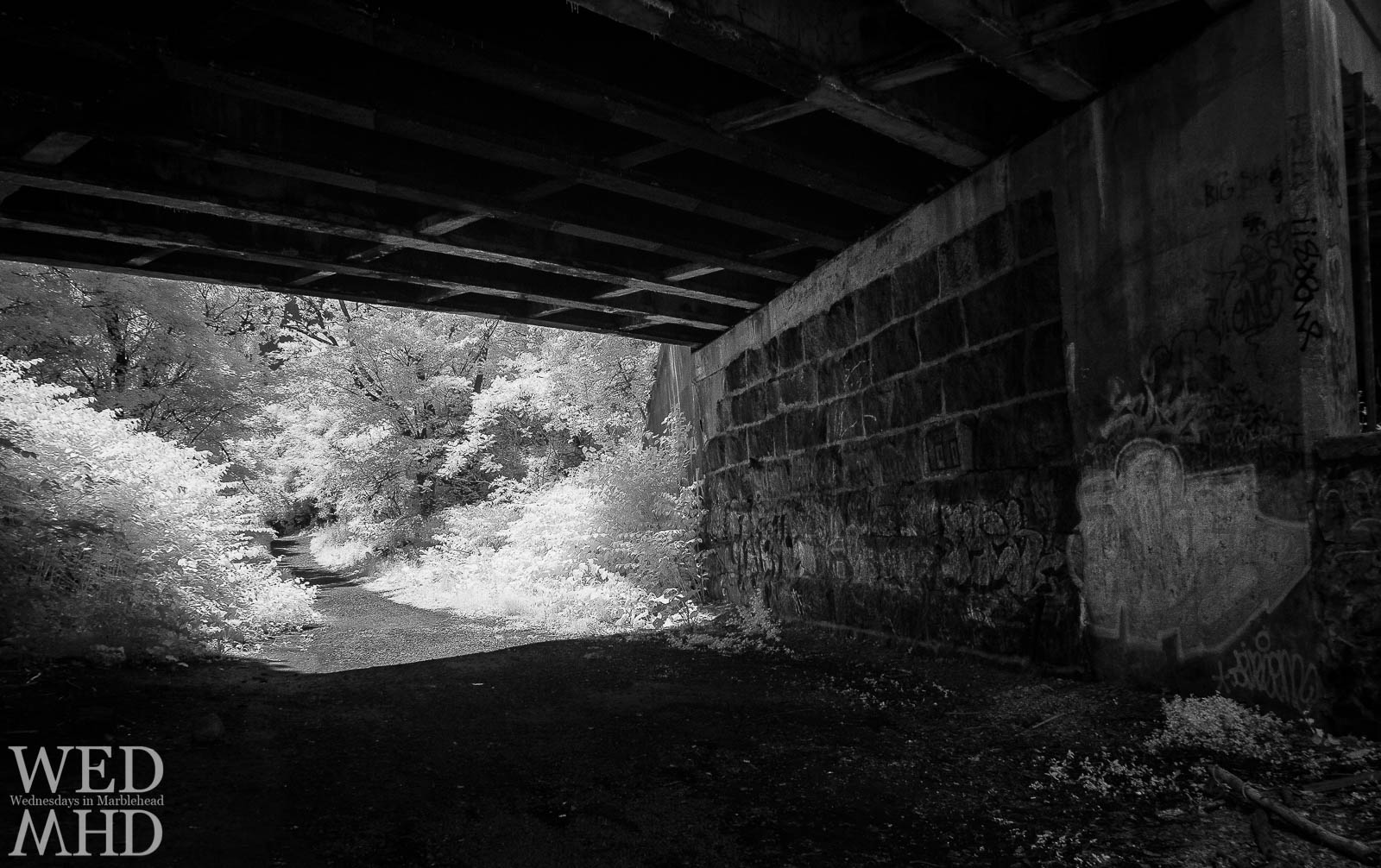 View under a bridge along the rail trail in Marblehead
