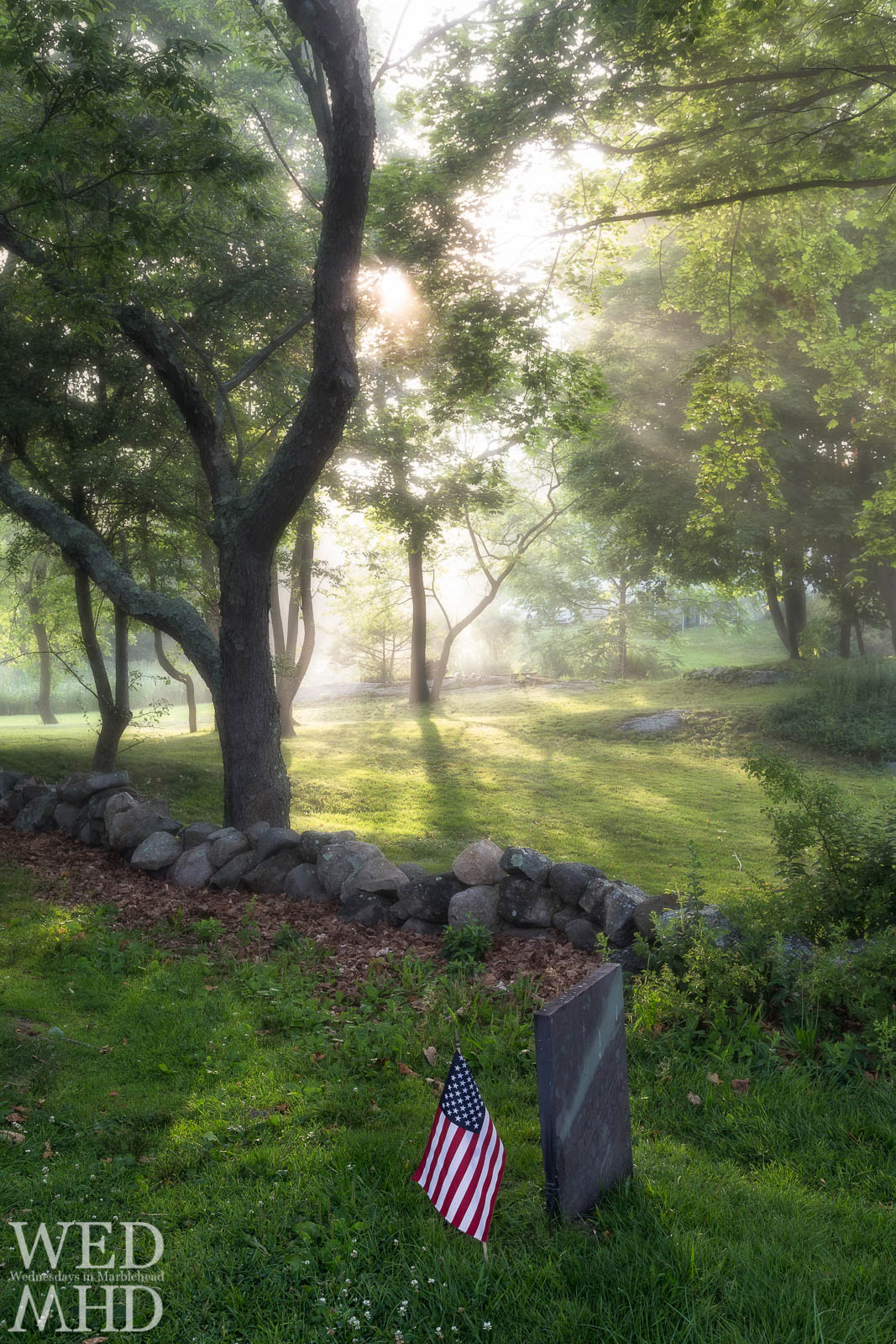 A flag planted near a grave at Old Burial Hill as the sun breaks through fog to light up the trees