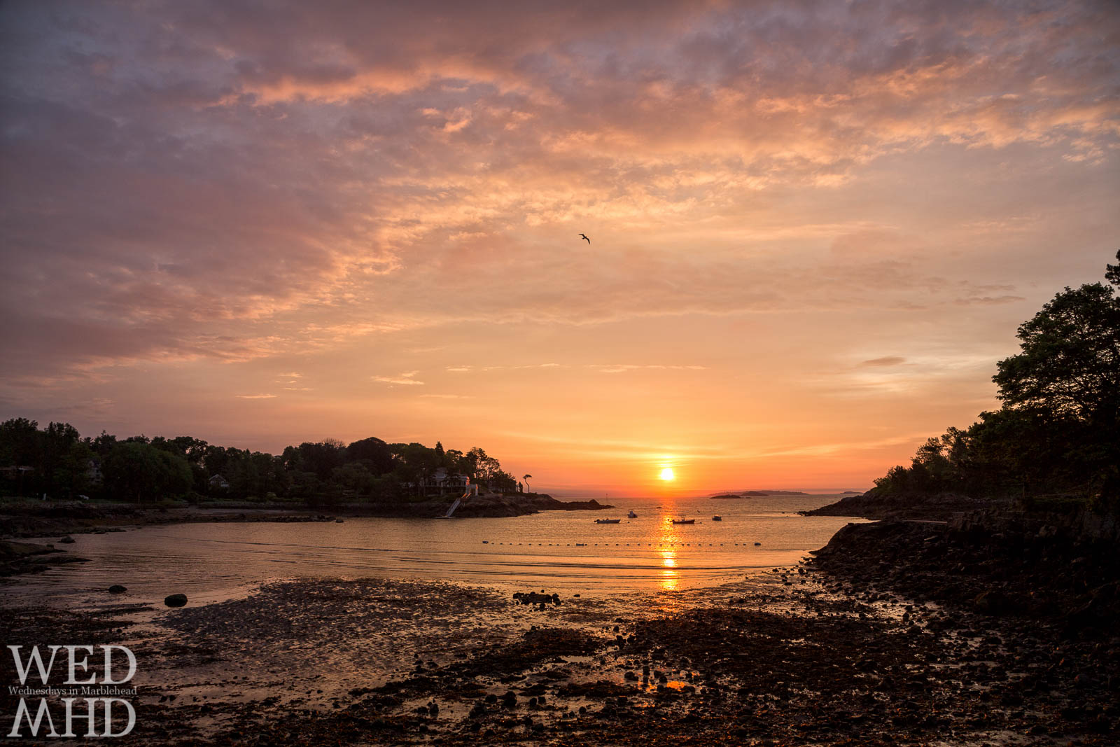 The Summer sunrise is captured at Doliber Cover at low tide with clouds reflecting the colors of a new day