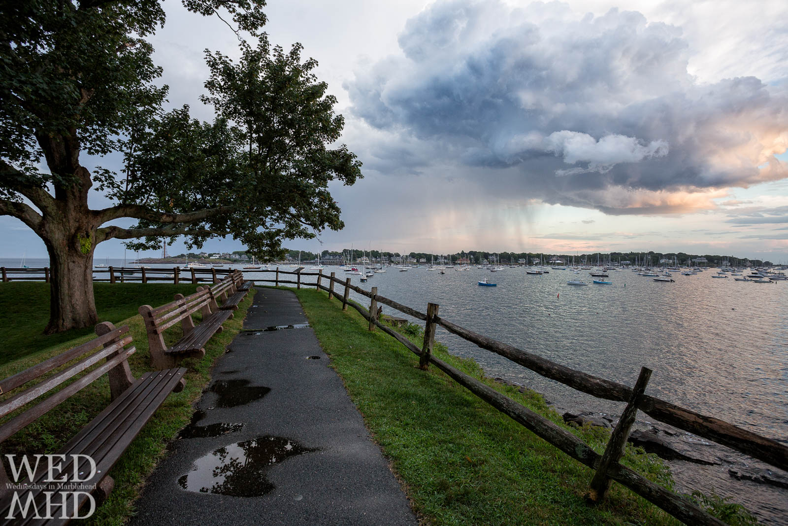 The great tree at Fort Sewall sets the scene for this view of Marblehead Harbor and a large rain cloud