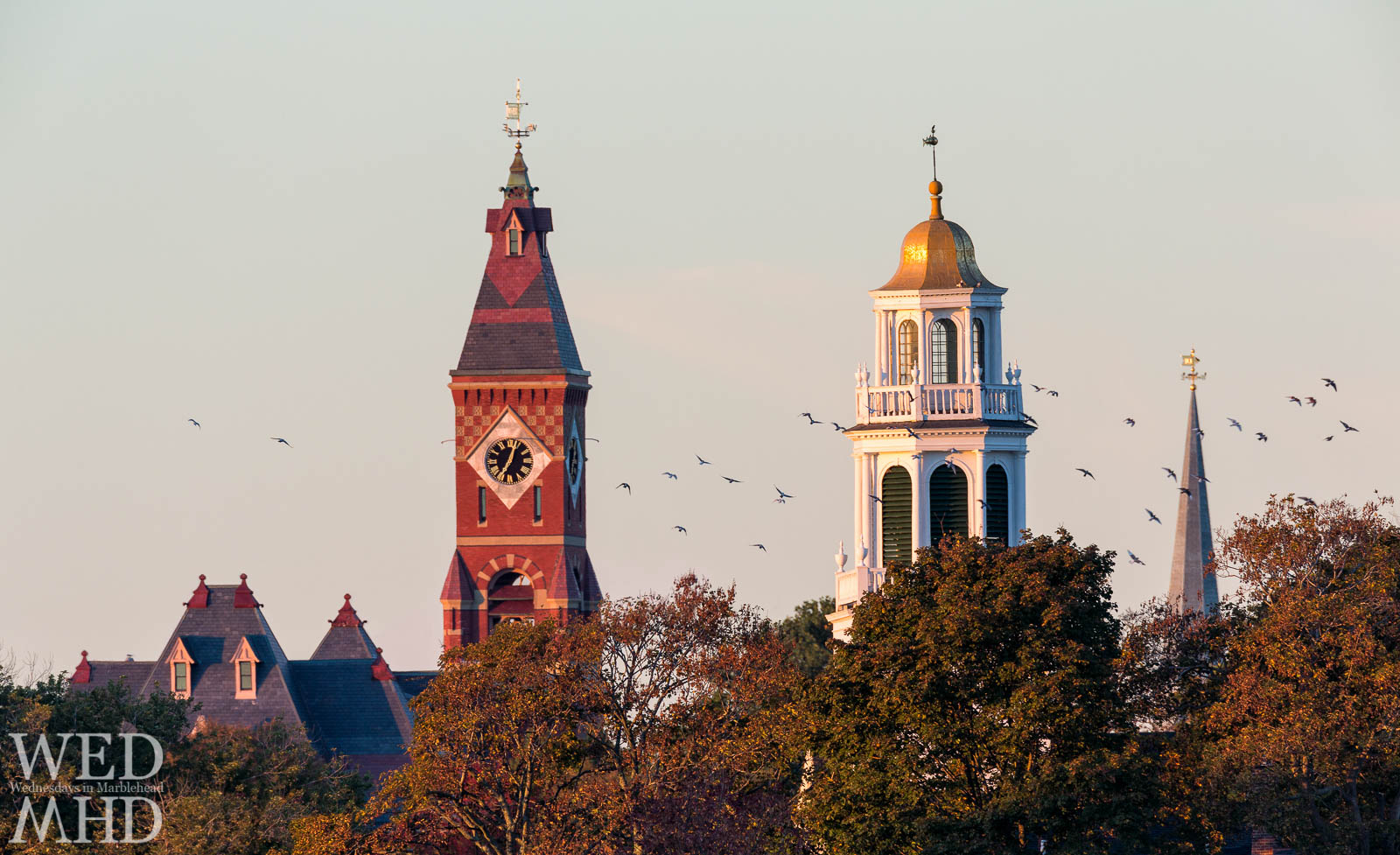 Birds fly between Abbot Hall, Old North Church and St. Michael's Steeple on a perfect morning in Marblehead