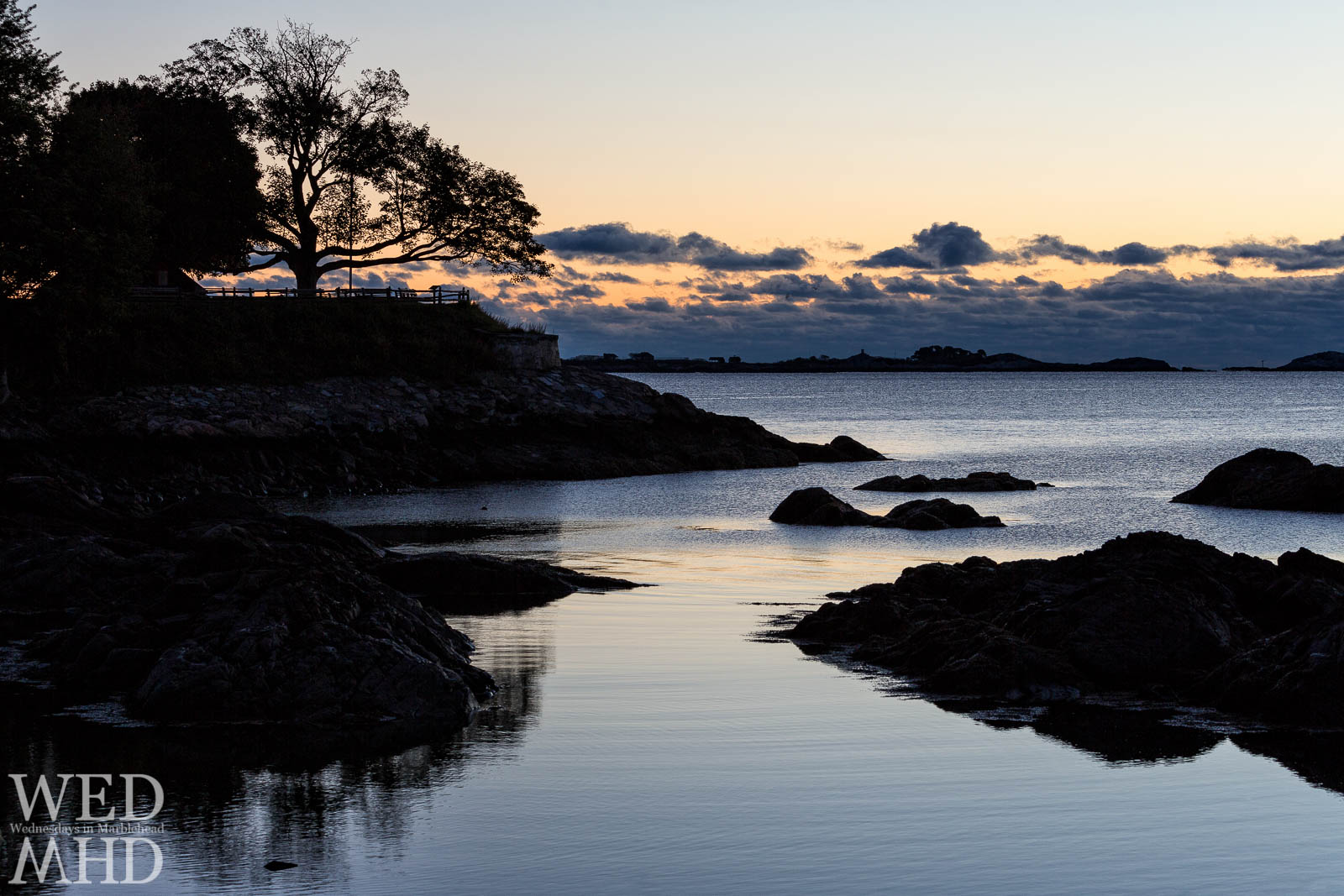 A calm morning on Fort Beach with the great tree at Fort Sewall cast in silhouette
