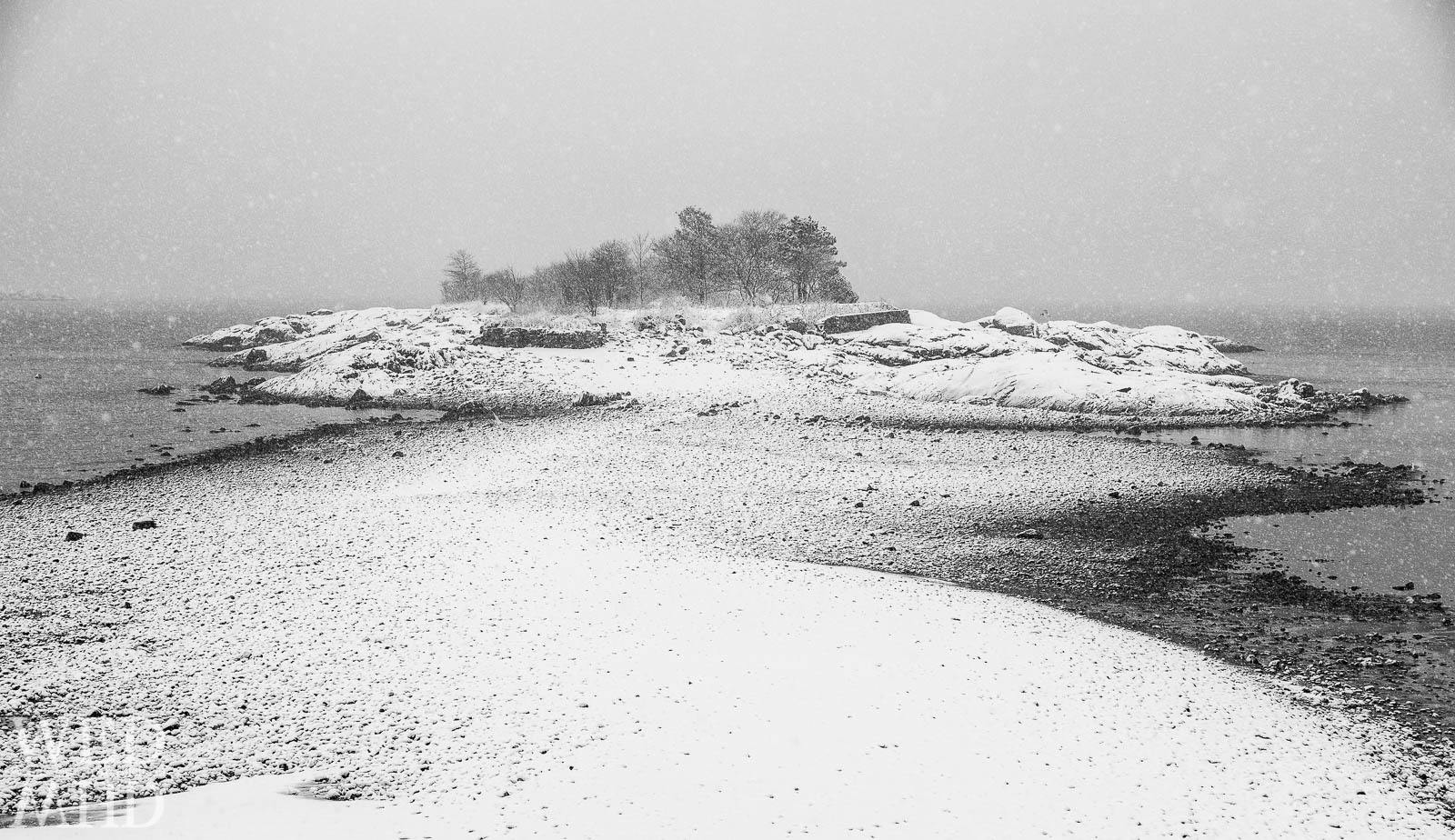 A snow lined road to Gerry Island forms during low tide in the midst of a snowstorm