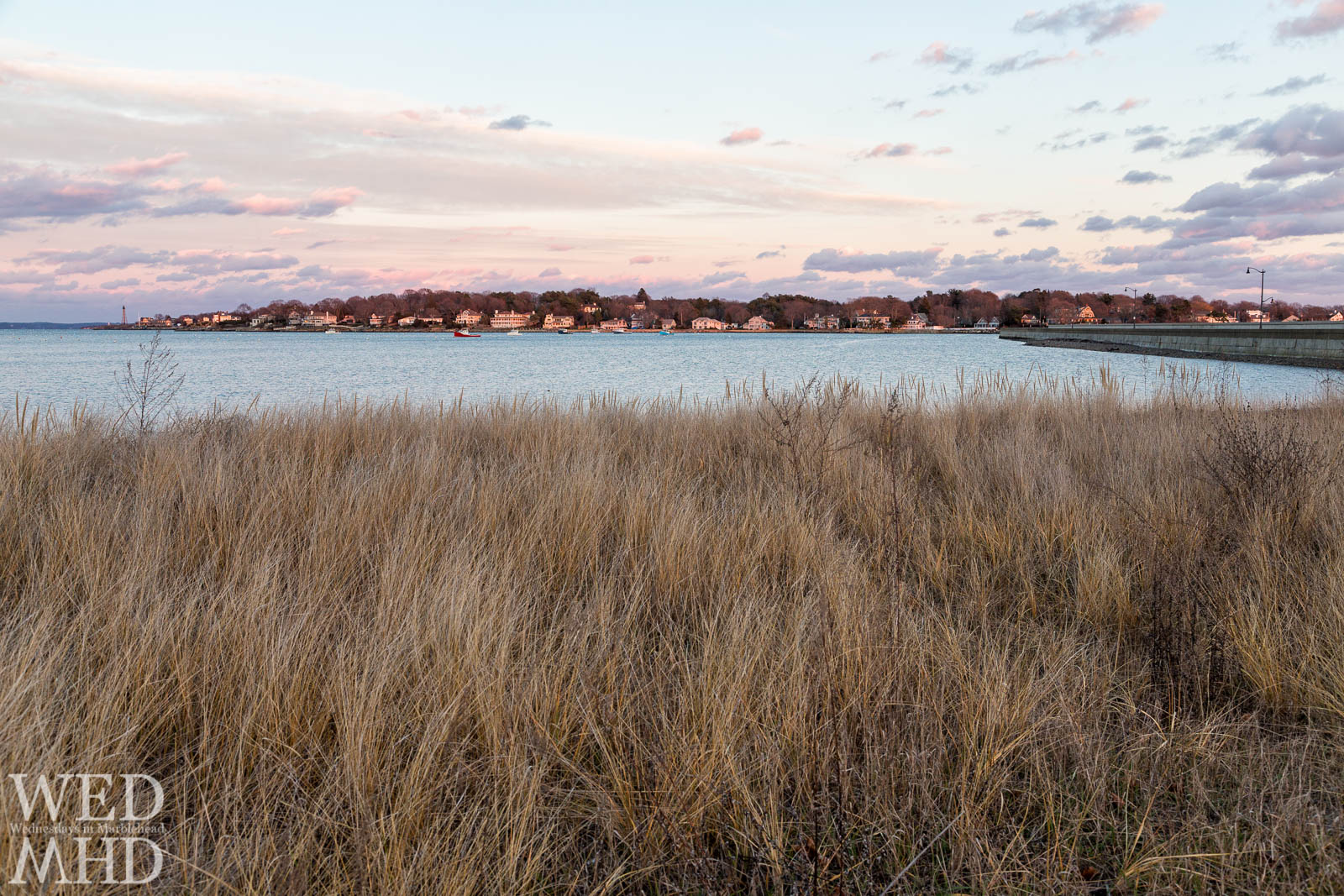 The dune grass grew thick on Riverhead Beach this Winter and made for a nice foreground in this sunset shot