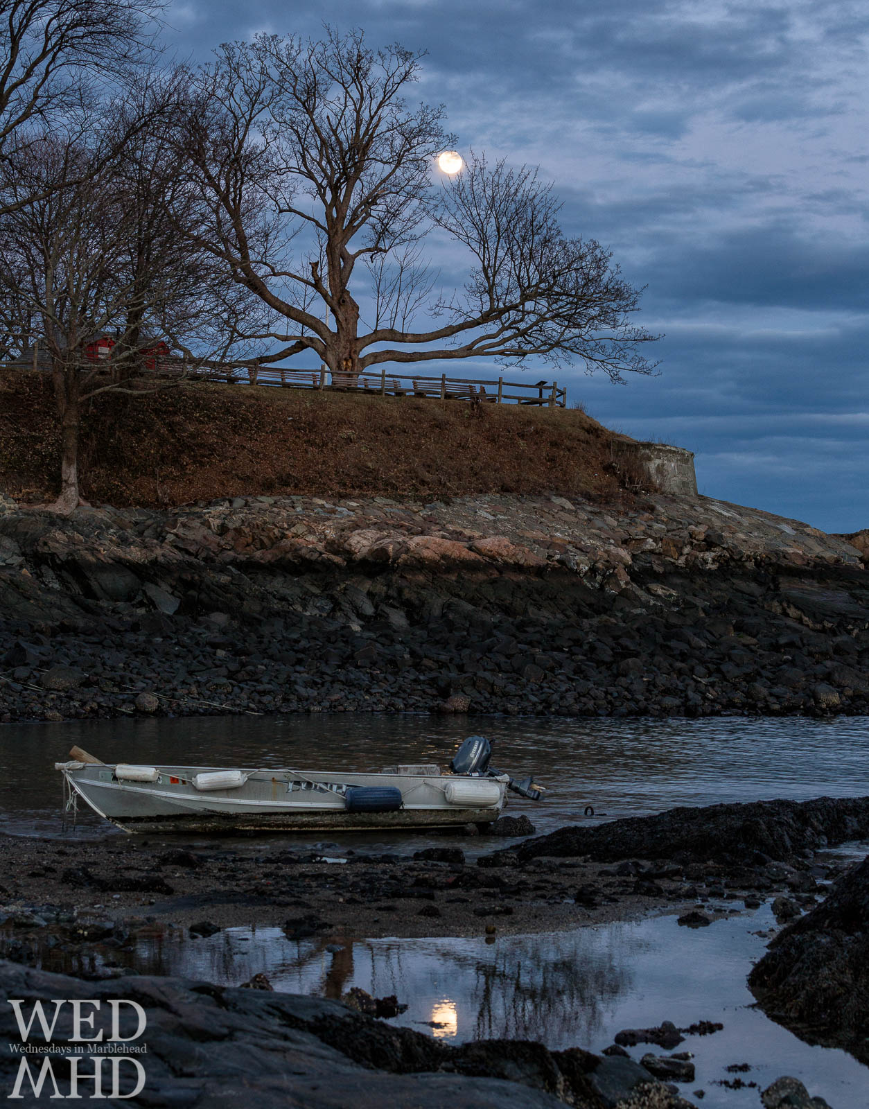 A nearly full moon behind the great tree at Fort Sewall casts a moonlit refleciton at Fort Beach