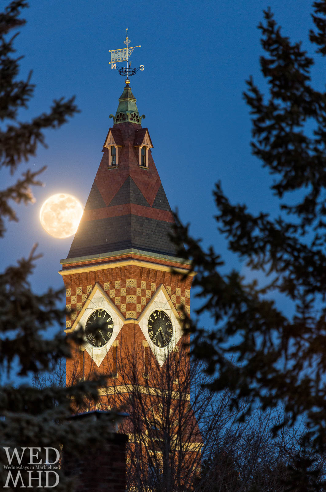 The full worm moon is captured through the trees as it comes up against Abbot Hall