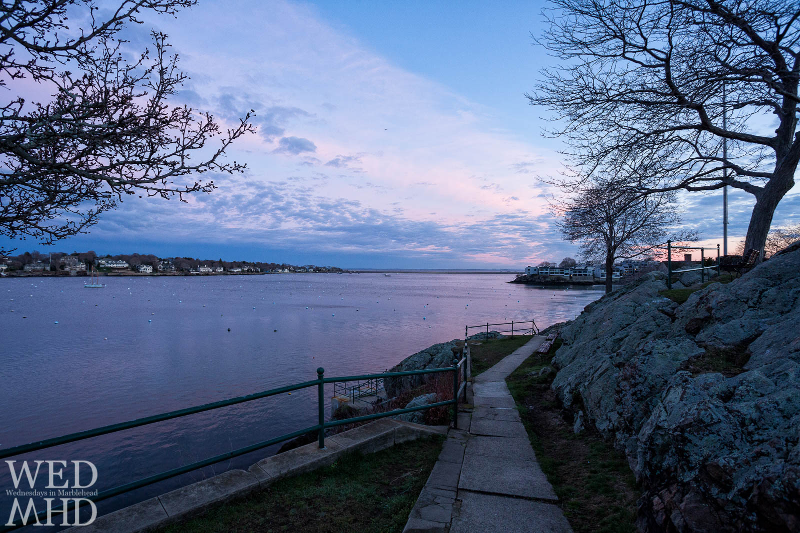 Budding trees line the path at Crocker Park leading toward the harbor under purple skies