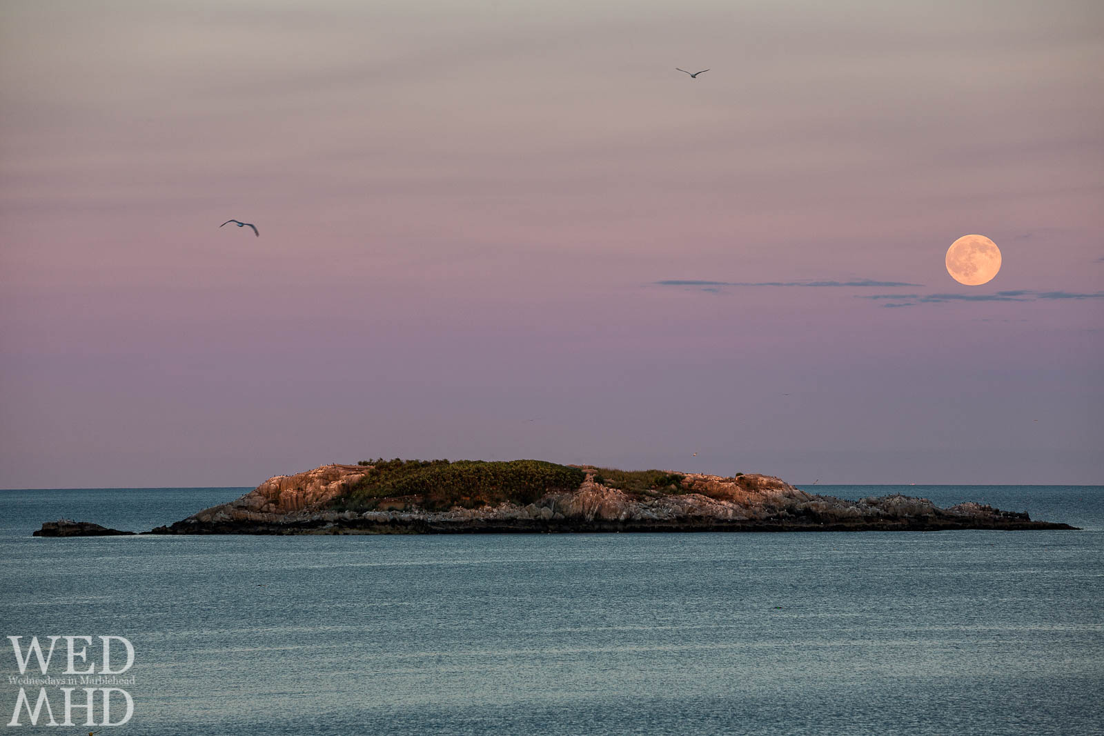 July's full Buck moon rises over Ram's island in Marblehead