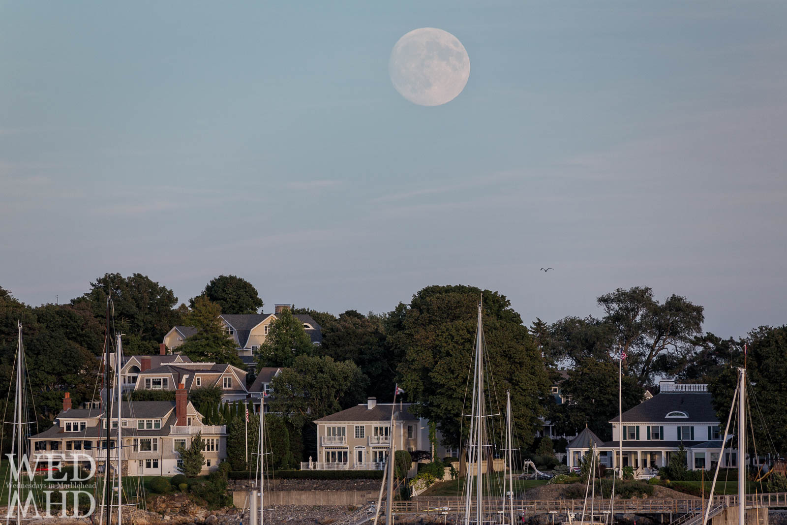 A huge Harvest moon rises over homes on Marblehead Neck