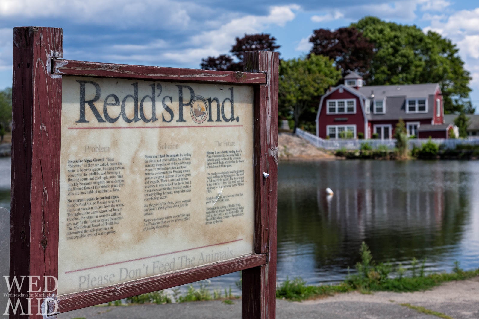 A sign at Redd's Pond offers information on the current state and history of this idylic pond