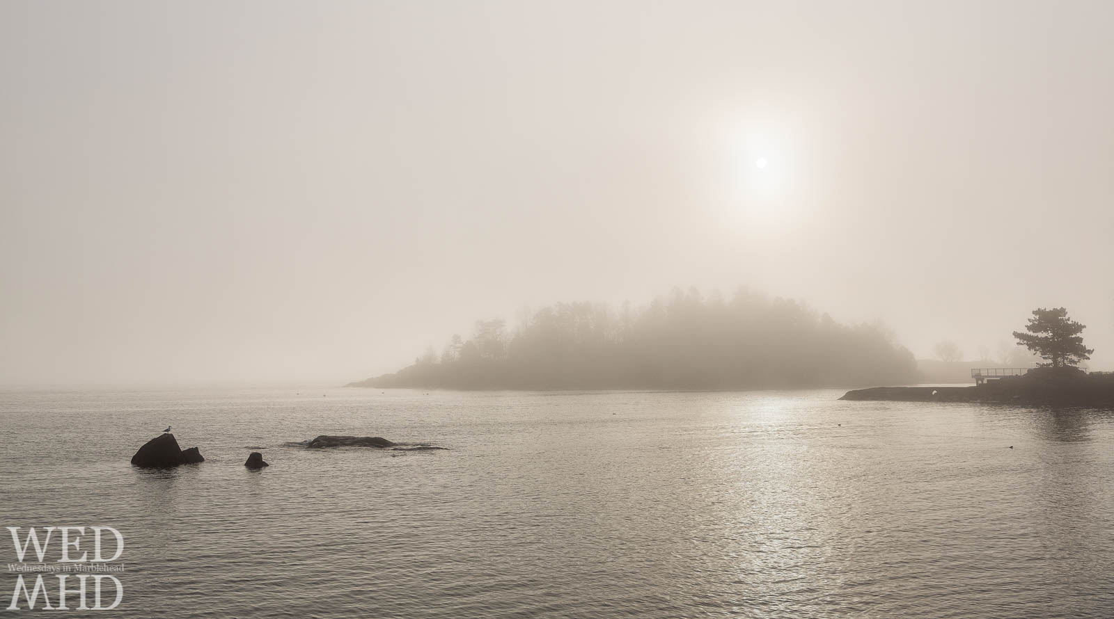 Morning sun burns through the fog over Browns Island as seen from Doliber's Cove