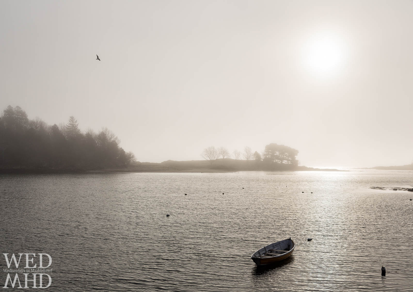 Sunlight is captured burning through the fog at Little Harbor above a lone moored boat