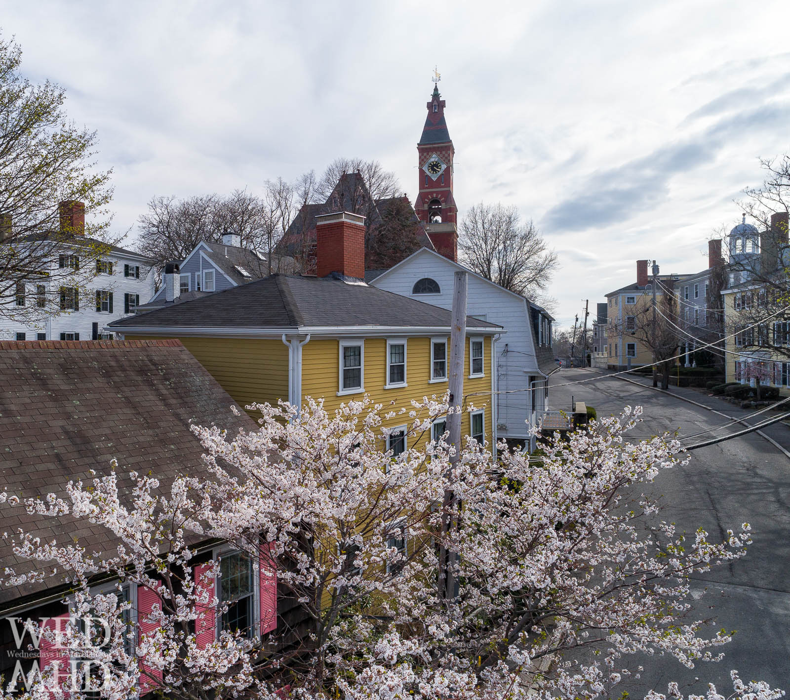 A sure sign of Spring in Marblehead is the appearance of cherry blossoms on Washington Street seen in this aerial view with Abbot Hall in the distance