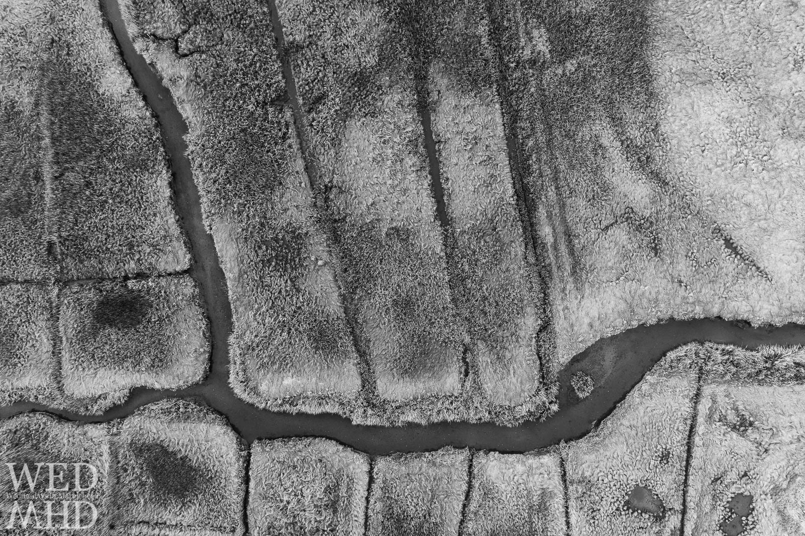 A river runs through Goldthwait Marsh as viewed from overhead in this black and white aerial image