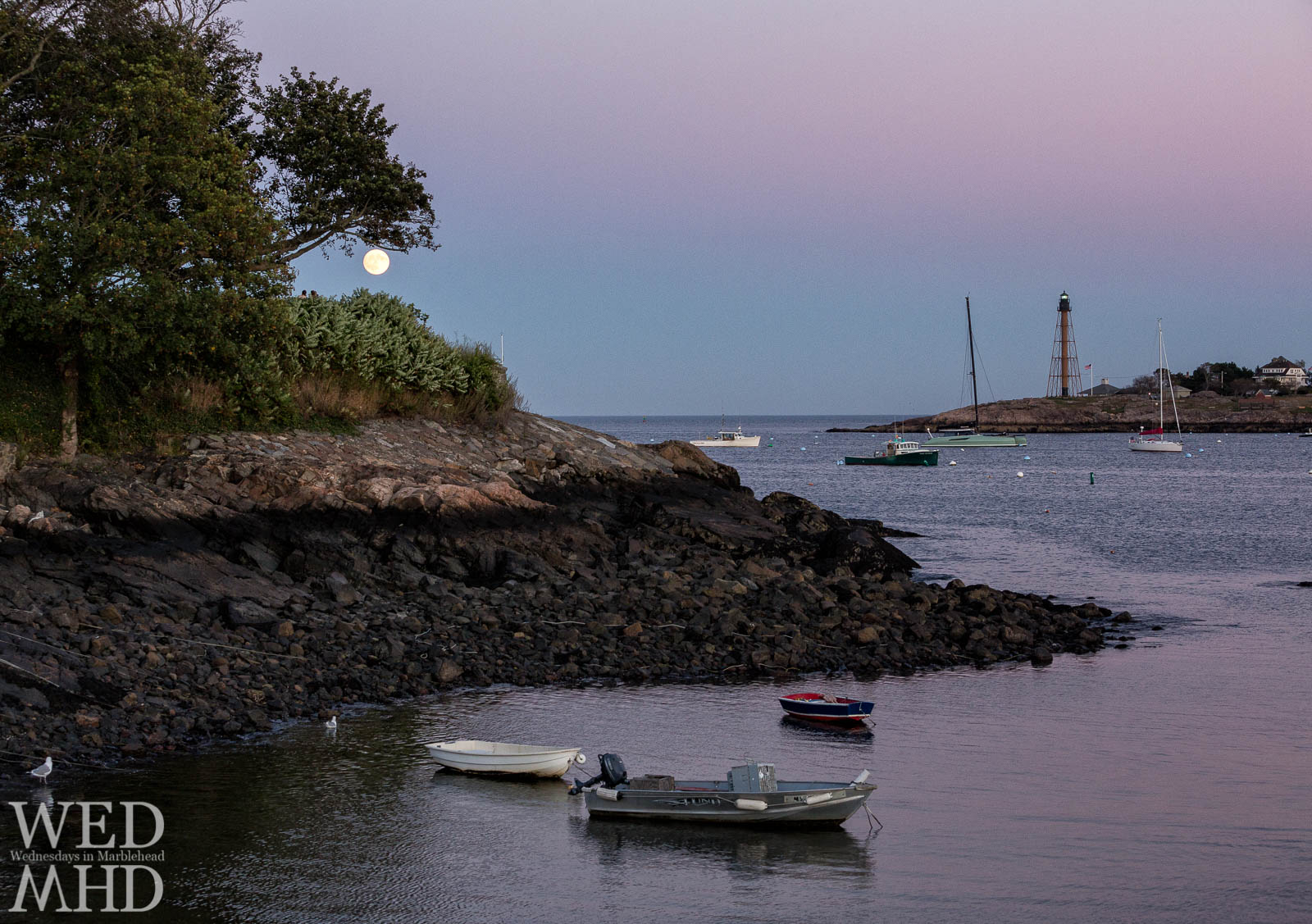 The Harvest moon rises under the tree at Fort Sewall with boats in Fort Beach and the lighthouse shining its beacon