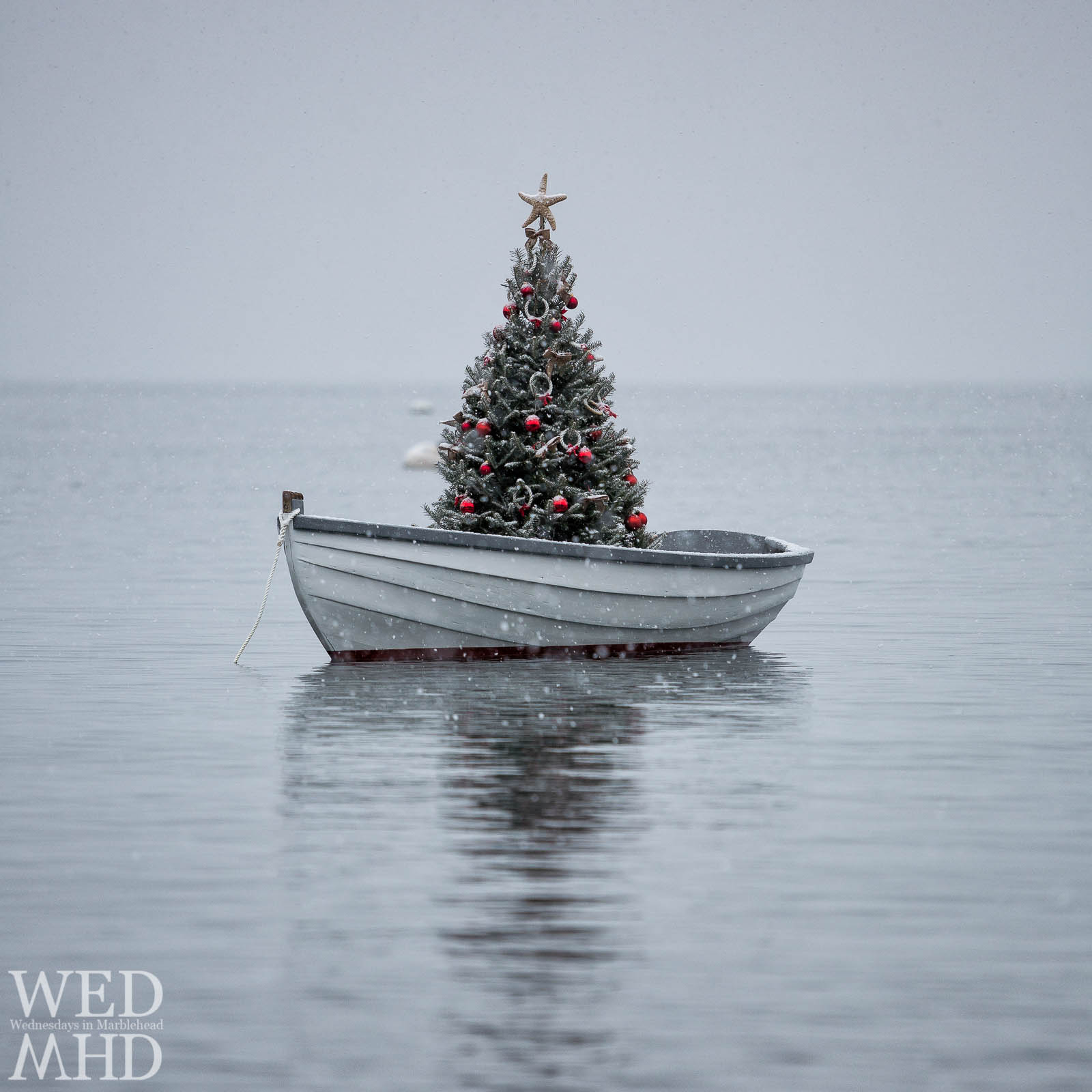 A small boat in Little Harbor holds a beautifully decorated tree in this view of Christmas at Sea during the first snow of the season