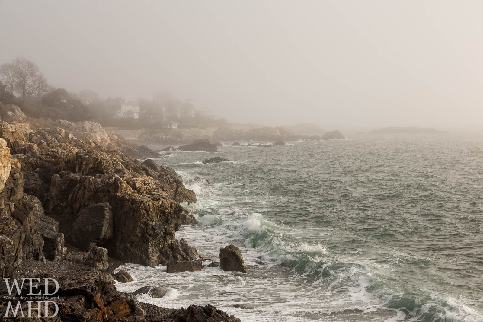 Waves seem to beckon as they appear out of the fog on this late February morning at Castle Rock