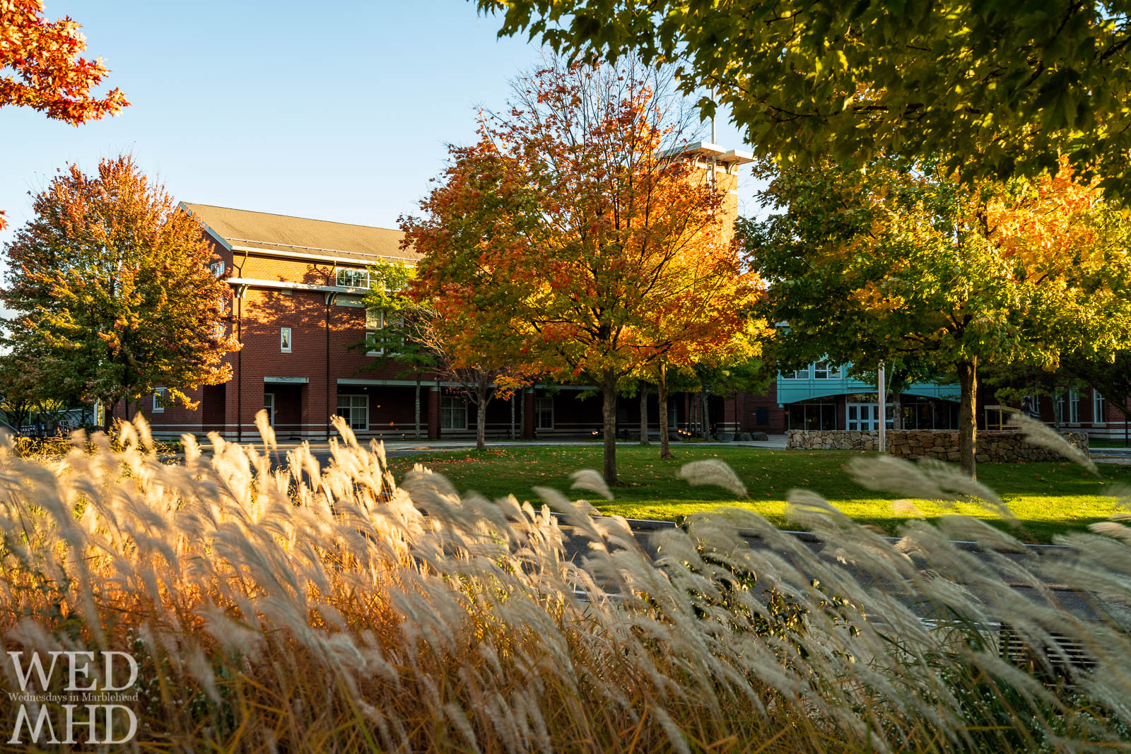 Grass is captured blowing in the wind with trees displaying their foliage in front of Marblehead High School