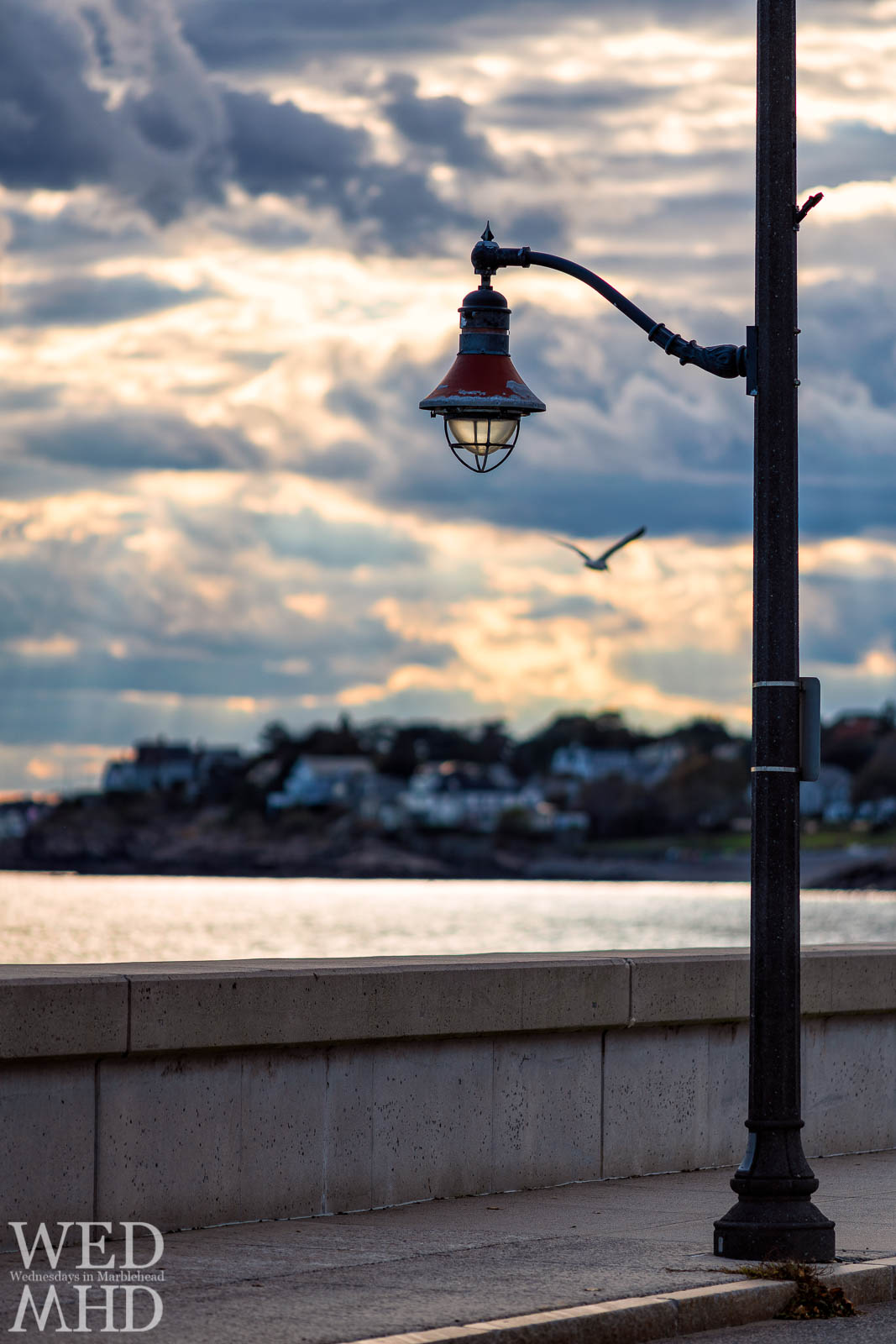 A seagull passes behind one of the lamp posts along the causeway as the sun begins to set
