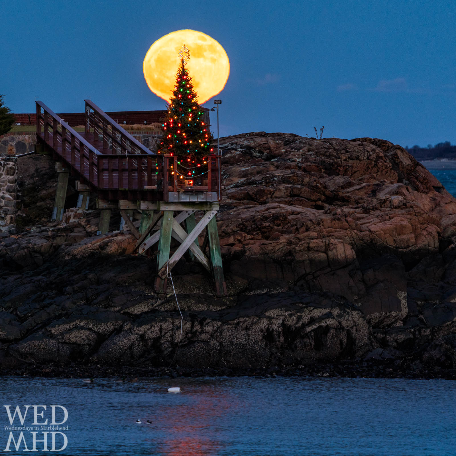 The full moon rises over a lit Christmas tree positioned at the end of a pier on Doliber Cove creating a picture-perfect image of a  Christmas moon