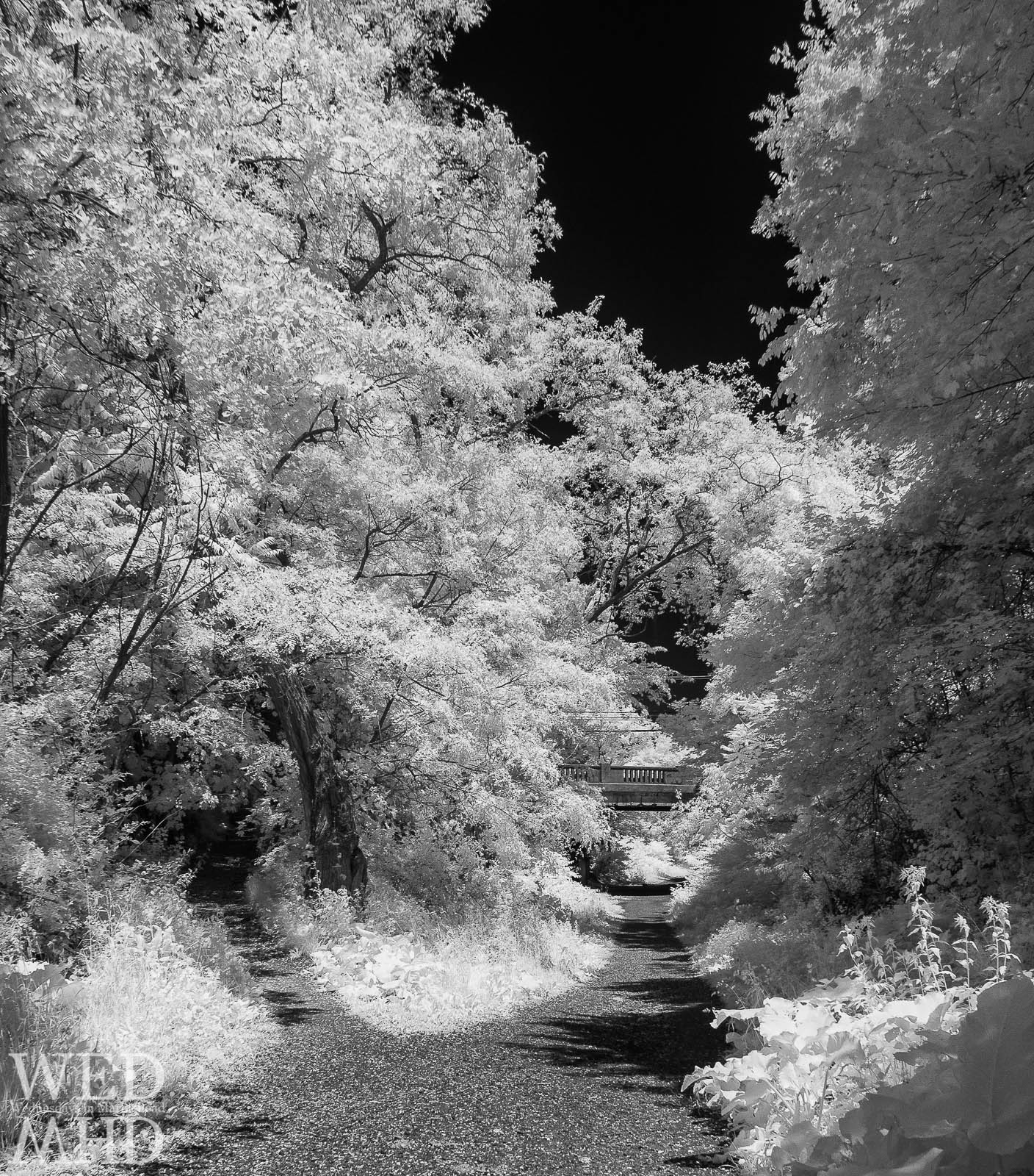 An infrared black and white image of the Village Street bridge over the Marblehead rail trail captured on a late spring afternoon