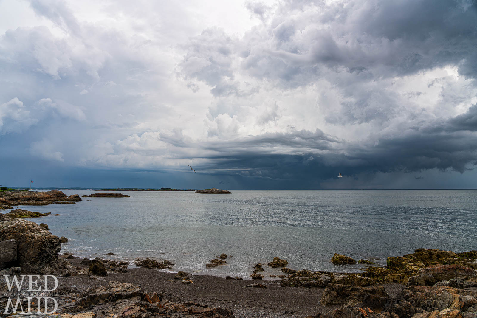 Two birds perform a Castle Rock fly by as a storm churns offshore creating a dramatic sky over the calm waters and rocky shoreline