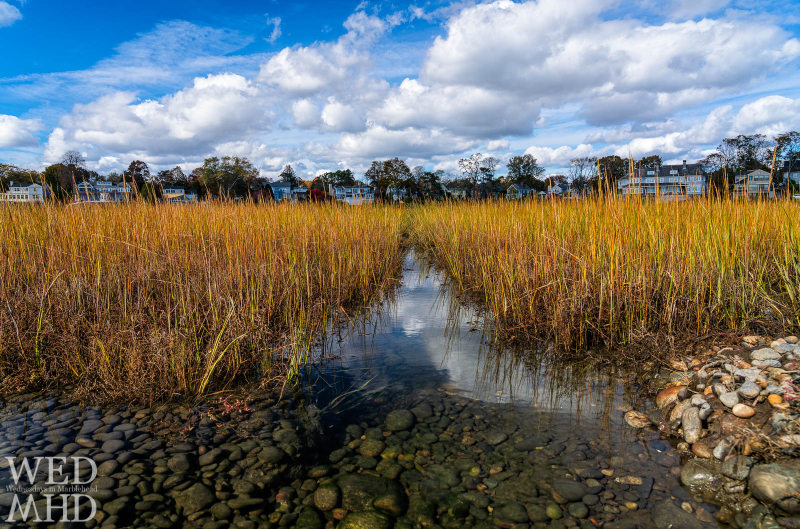 A fall afternoon at the Goldthwait Reservation at high tide allowed me to explore reflections in the tall grass under a cloudy sky