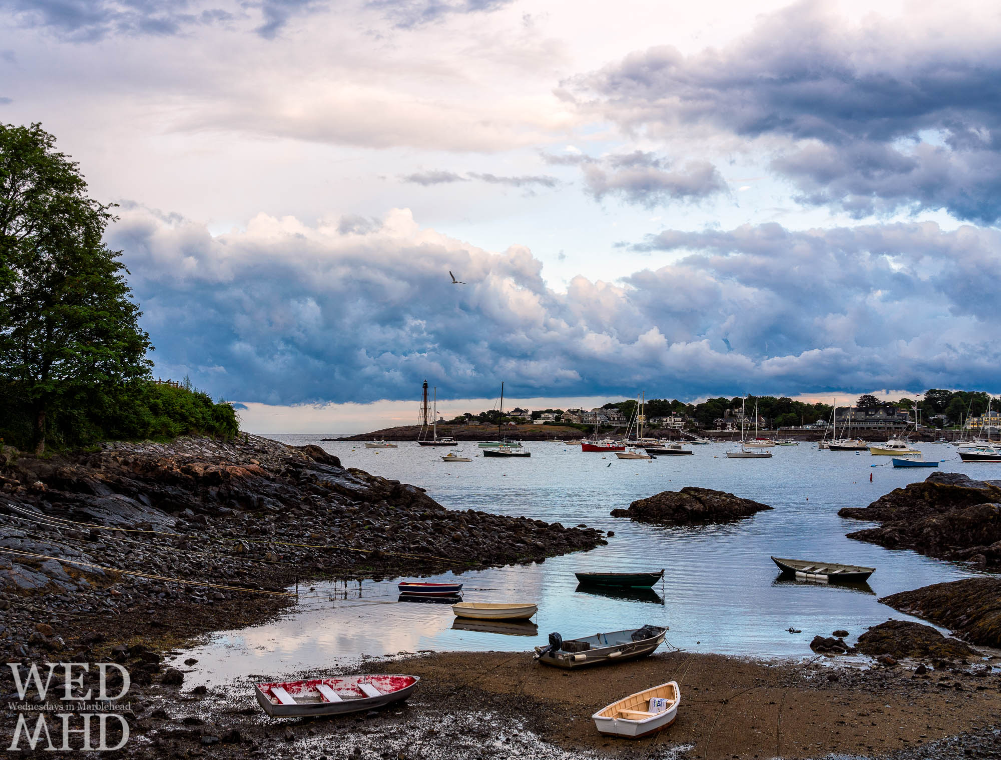 A seagull flies in front of clouds from a passing storm as low tide beaches a few boats at Fort Beach in Marblehead
