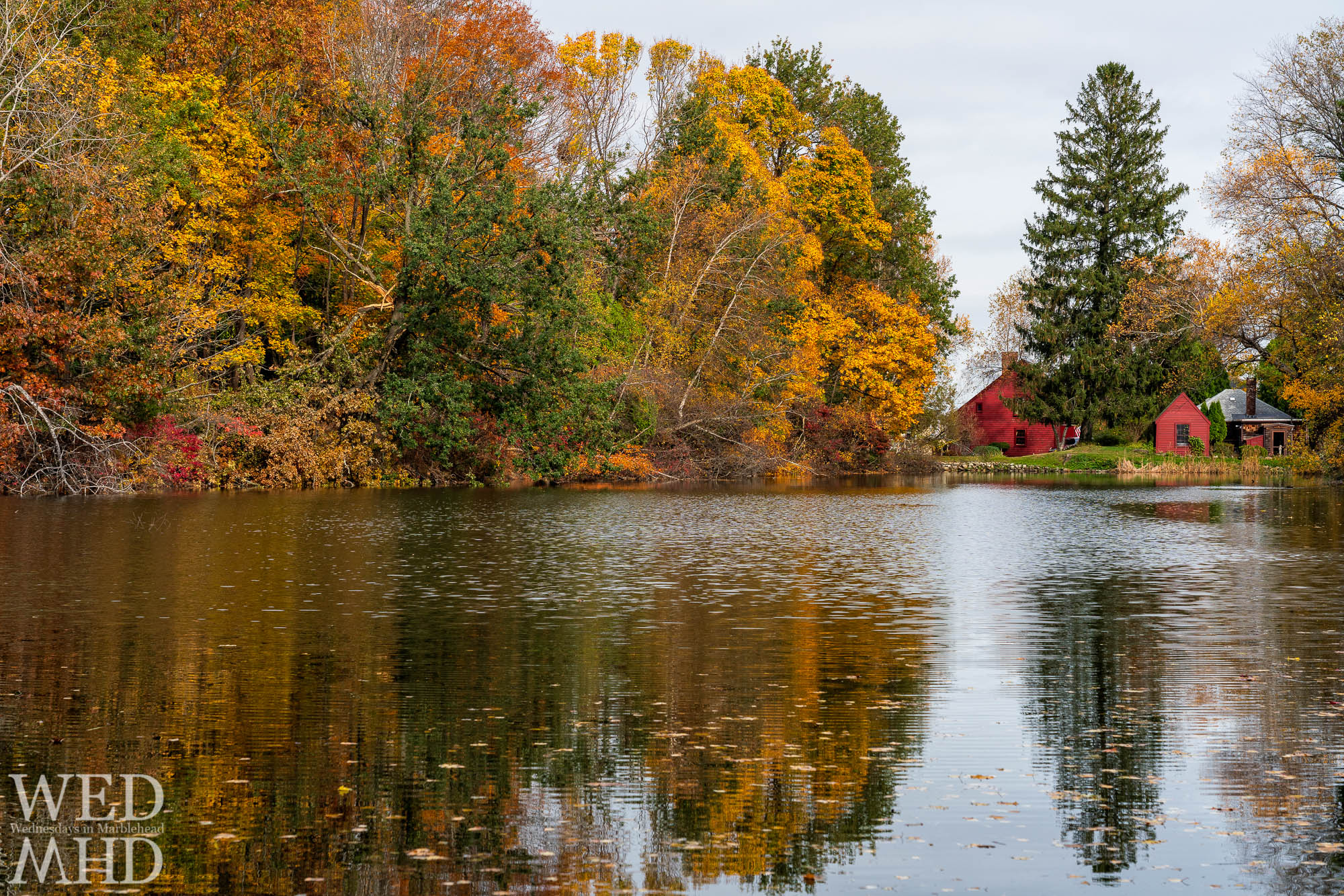 Fall foliage reflects in the still waters of Black Joes pond on a late October day