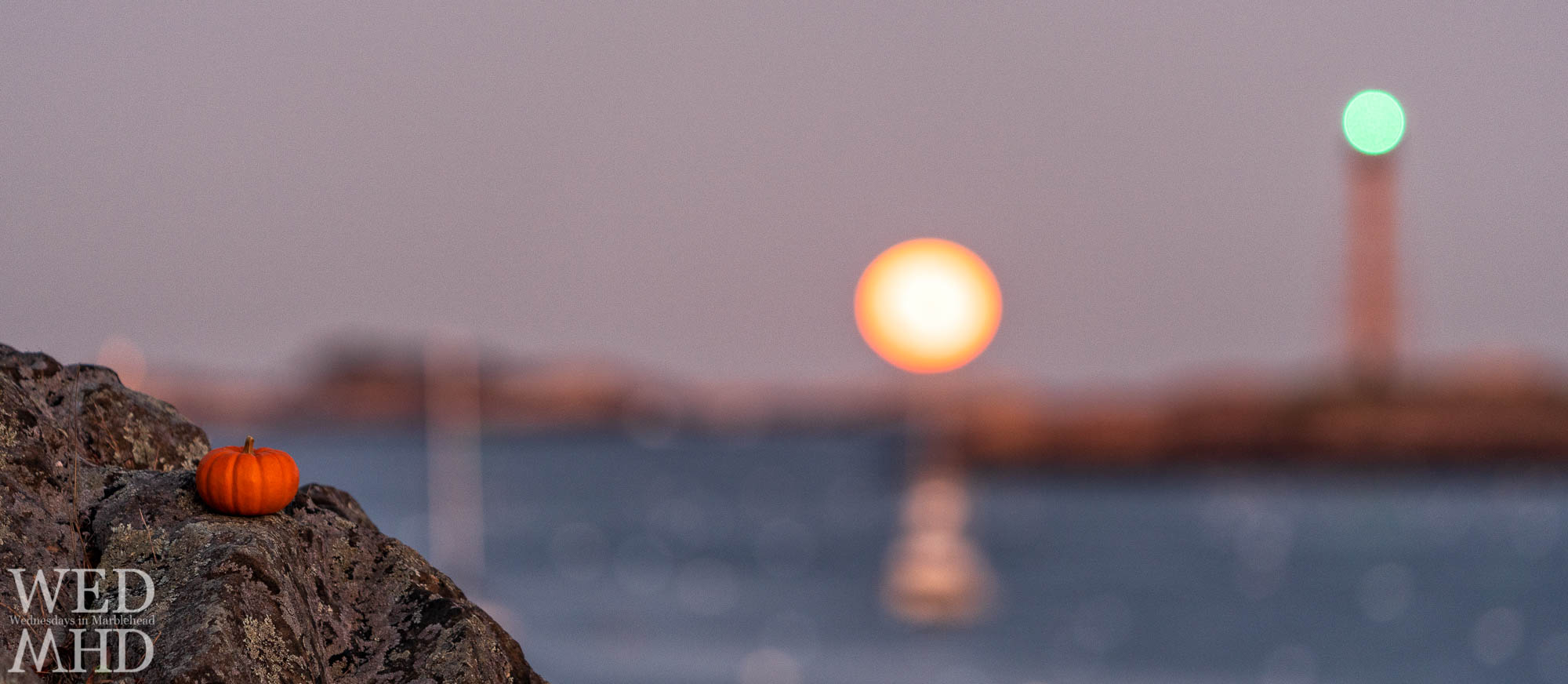 A pumpkin takes focus from the Halloween blue moon rising over Marblehead harbor