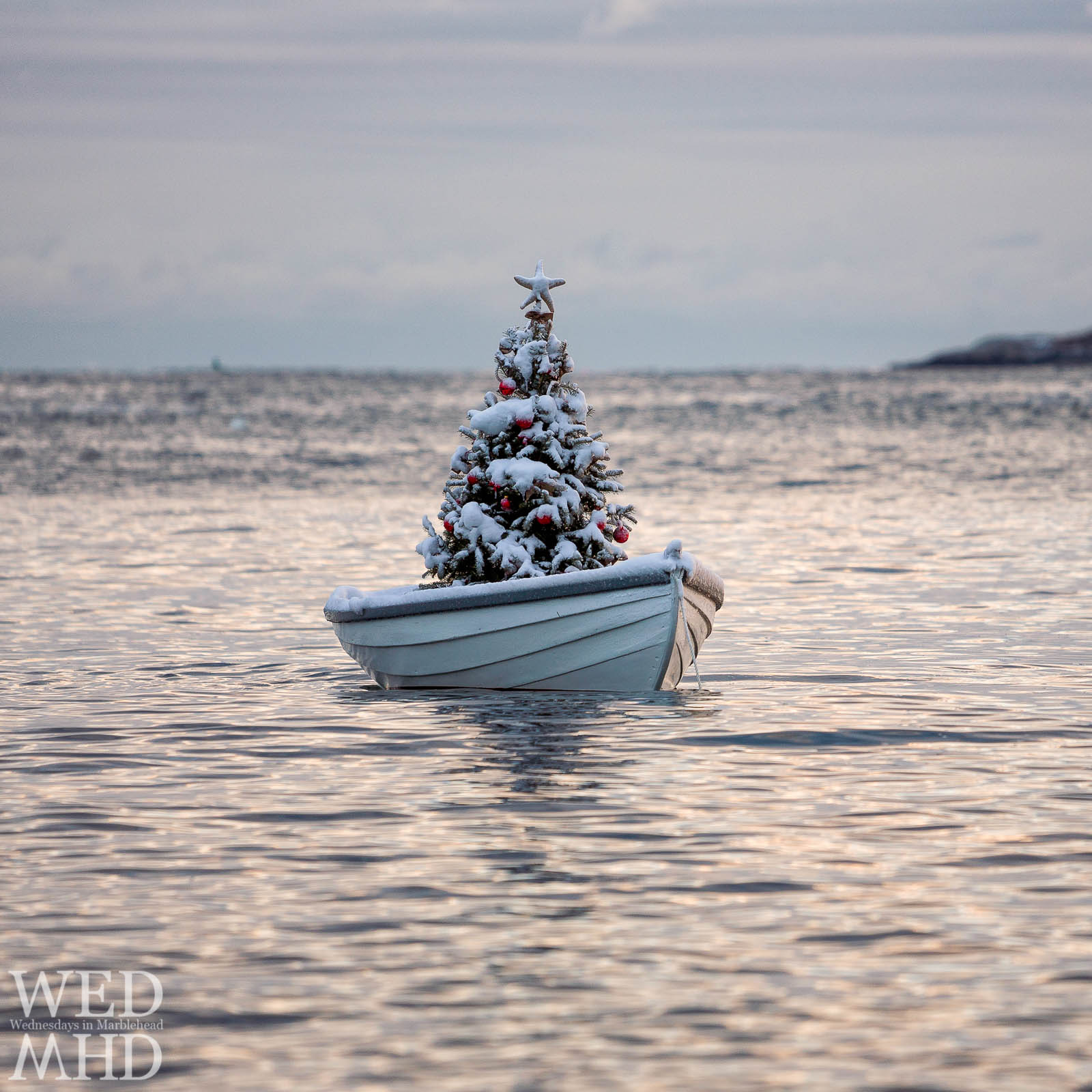 A blanket of snow covers the Christmas Tree in a boat that has become an annual tradition in Marblehead's Little Harbor
