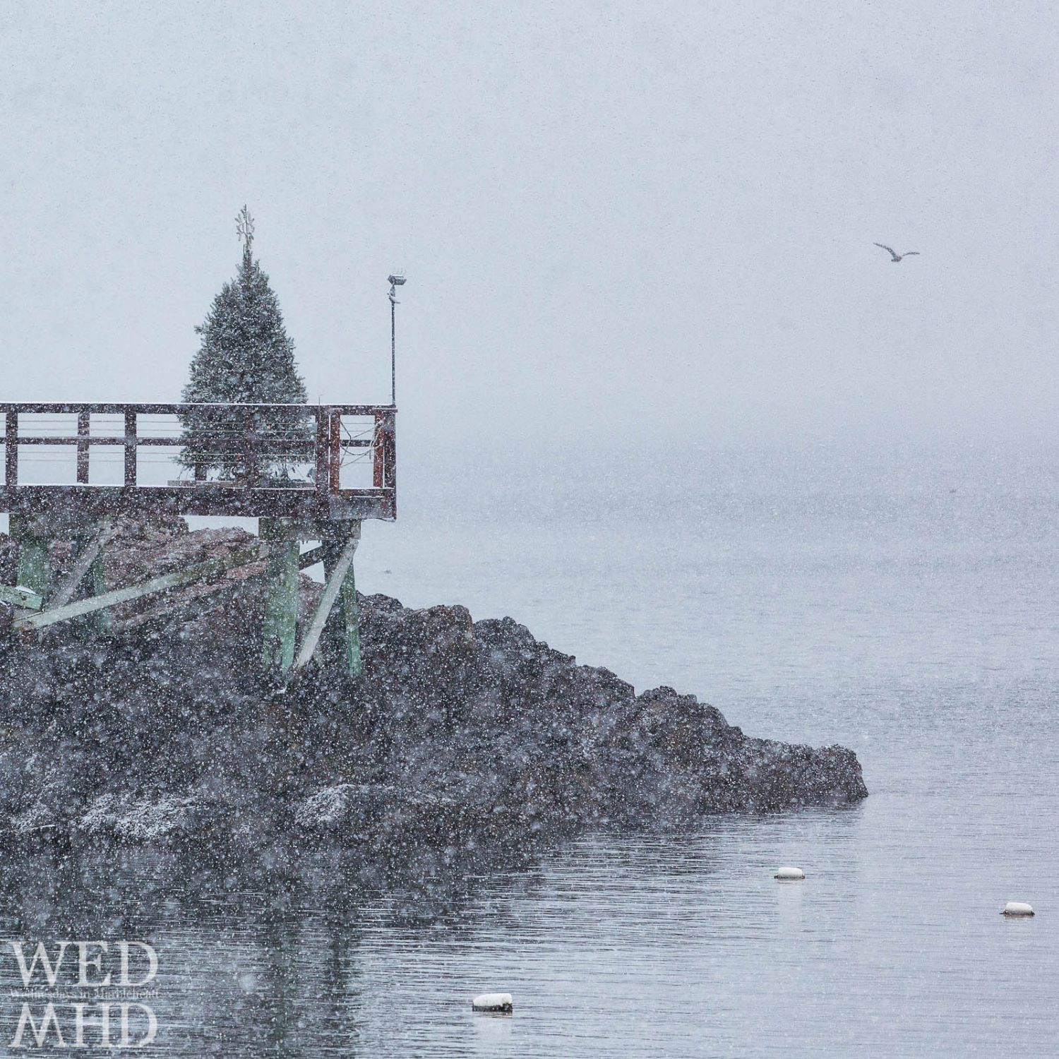 Have to make due with winds and rain this year but here is the view of what a white Christmas in Marblehead would look like
