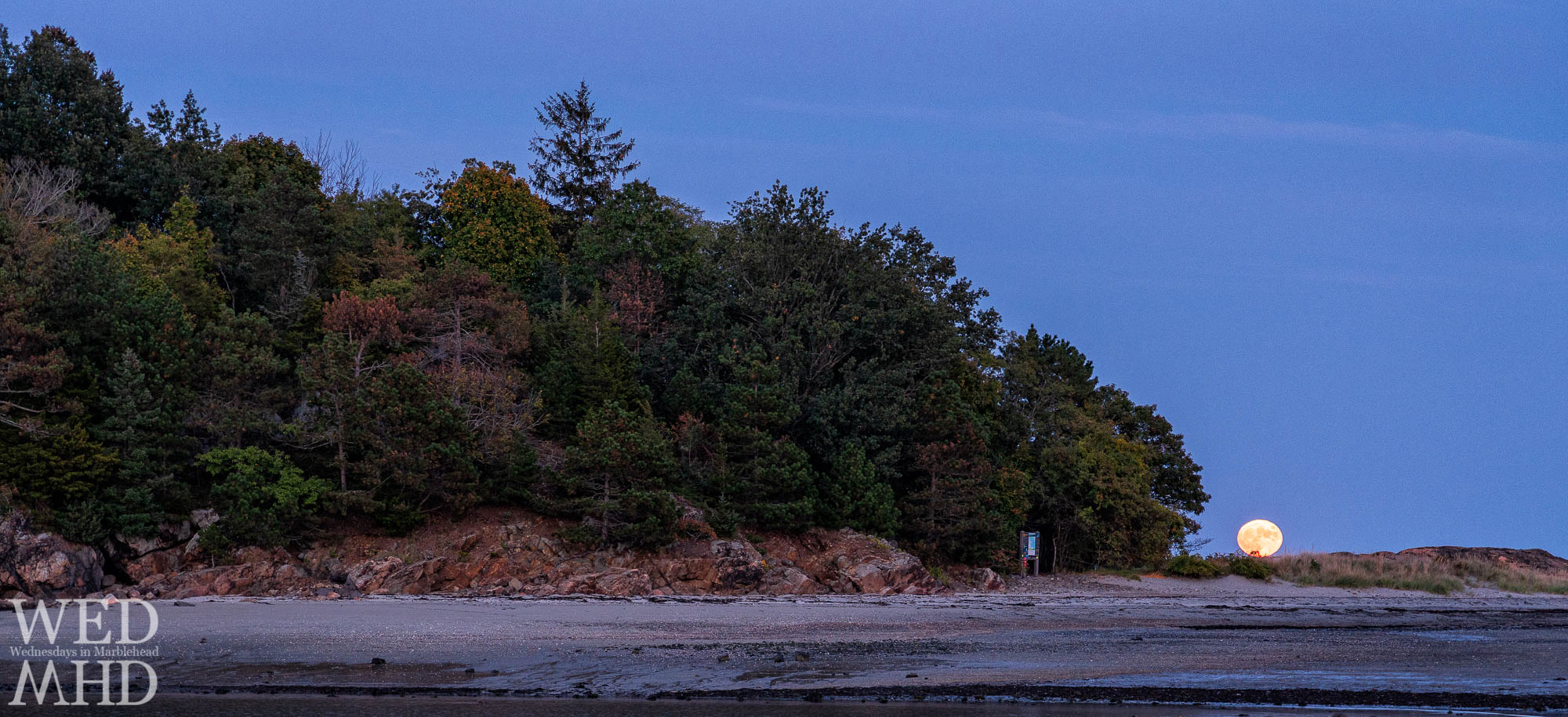 The full Hunter's Moon rises over Brown's Island at low tide with hints of foliage showing in the canopy